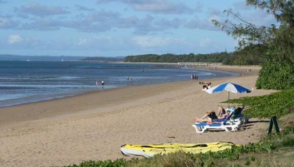 Council elections – Foreshore plan